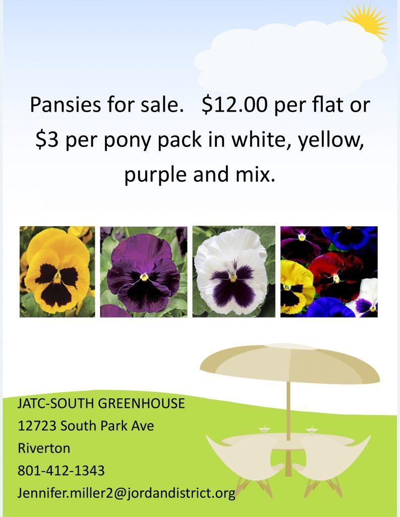Flyer of Pansies